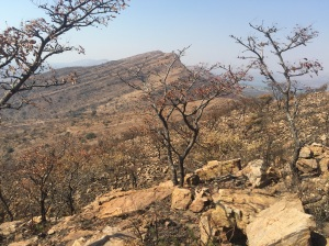 Somewhere on top of Magaliesberg